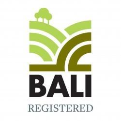 Cordek joins BALI